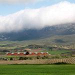 Bodegas Ysios Winery, Laguardia, Spain, Santiago Calatrava