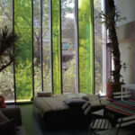 Amsterdam 253, Mexico City, Mexico, Taller 13 Arquitectura Regenerativa