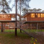 The Treehouse, Hechtel-Eksel, Belgium, Baumraum