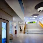 Primary School De Schatkamer, Zwolle, Netherlands, Bekkering Adams Architecten