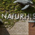 The University of Aarhus, Aarhus, Denmark, C.F. Møller Architects